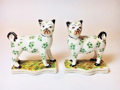 Pair of Rare Antique Staffordshire Hand painted Pottery Pugs-Clover design c1880