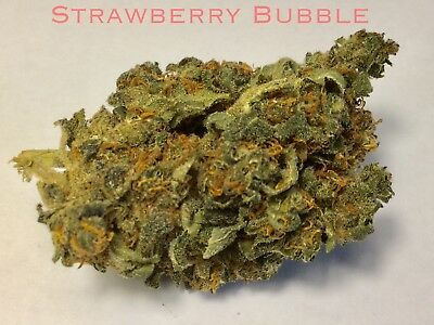 Strawberry Bubble Flowers 5g