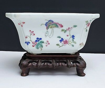 Chinese Famille Rose Porcelain Planter w Enameled Butterflies on Wood Stand