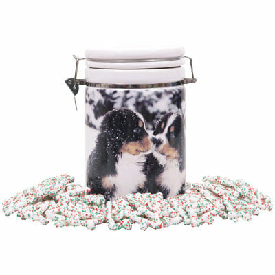 Bernese Mountain Dog Christmas  glass canister with pretzels brand new RARE !!!!