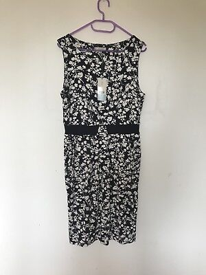 NWT Hobbs Dress Size 12 Navy & Ivory Floral Ocassion Career Work Party Olivia