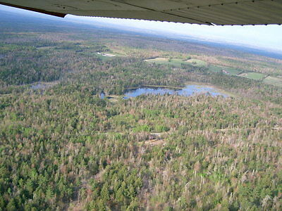 New York State 130 Acres/ Large Pond,owner Financing, Price Per Acre