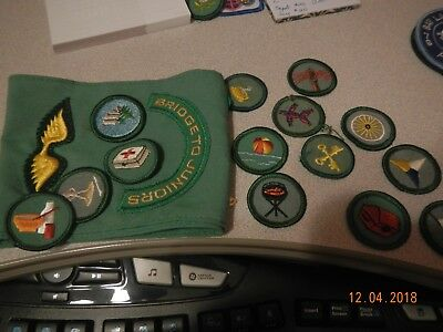 Girl Scout sash and 14 badges