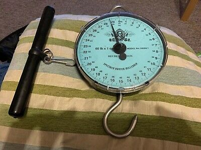 Reuben heaton 60lb specimen hunter scales carp fishing Millenia