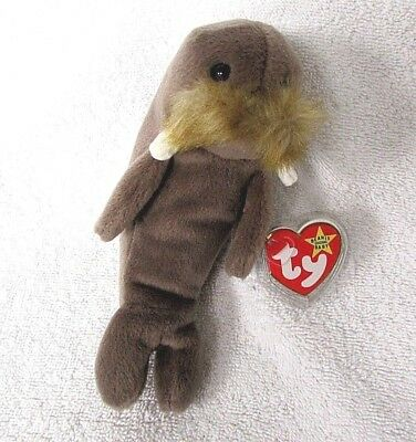 """TY BEANIE BABIES """"Jolly"""" The Walrus Original 1996 Retired Collectible Toy EE39"""