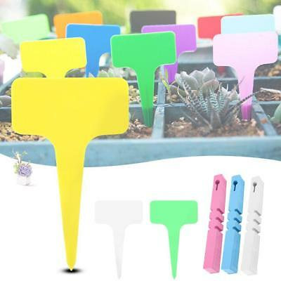Stick Ribbon T-type Garden Plant Flower Seedling Label Nursery Hanging Tags A