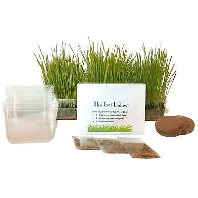 The Cat Ladies Cat Grass Growing Kit - 3 pack Organic seed