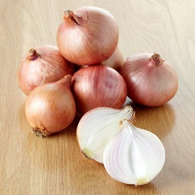 Onion Sets - Rosanna (Pink) - 1/4 Kg (Approx 70-80 Sets)