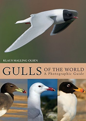 Malling Olsen Klaus-Gulls Of The World BOOKH NEW