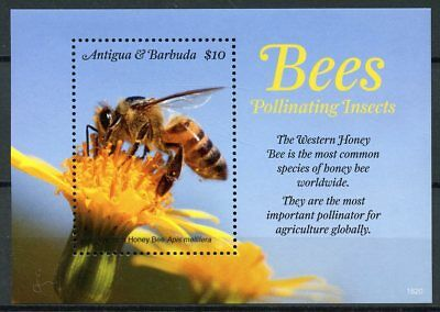 Antigua & Barbuda 2018 MNH Bees Pollinating Insects 1v S/S Bee Stamps