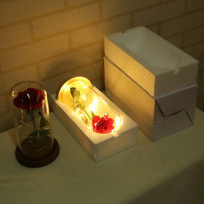 Beauty And The Beast Enchanted Rose LED Glass Cover Night Light Lamp Flower Gift