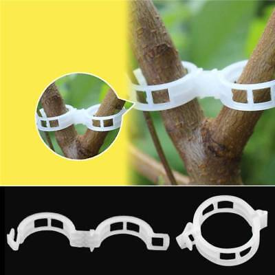 100Pcs Garden Plant Support Clips Connects Plants Vine Vegetable Fastening Clip
