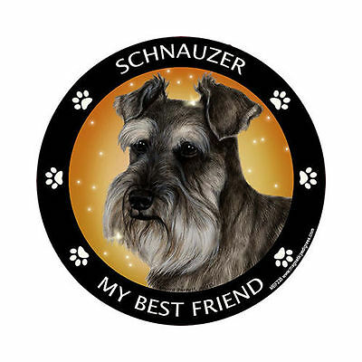 My Schnauzer Uncropped Is My Best Friend Dog Car Magnet