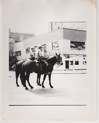1960's Chicago Police Department Horse Mounted Officers 8x10 Actual Pic Photo