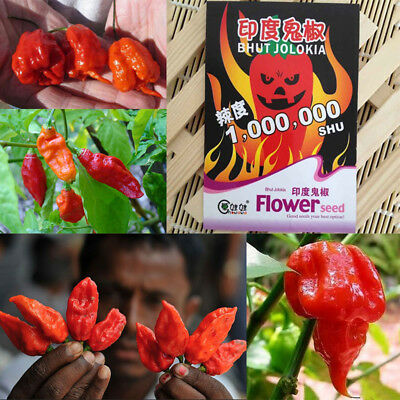 Ghost Pepper Carolina Reaper Trinidad Moruga Scorpion Hot Chili Seeds New