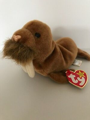 TY BEANIE BABY - PAUL the Walrus (7 inch) - MWMT s Stuffed Animal ... 9fbffb46dbf7