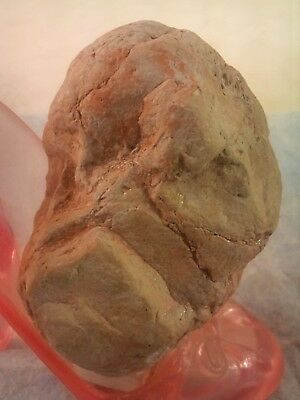 "Paleolithic-Neolithic ""Portable Rock Art"" & Tool At its best. Rift Valley 423gr'"