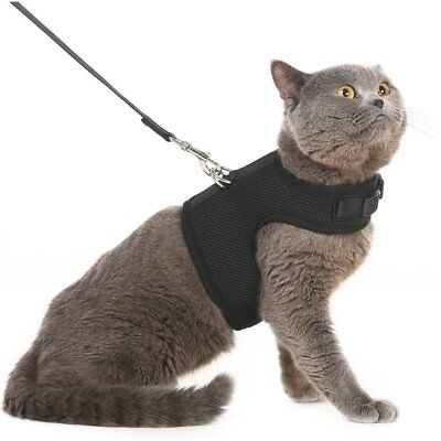 Escape Proof Cat Harness Leash Adjustable Soft Mesh Holster Style Walking Hiking