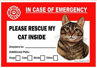 Brown Tabby Cat Pet Savers Emergency Rescue Window Cling Sticker