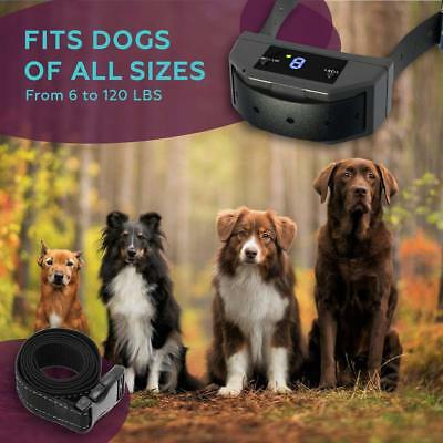 Dog Shock Collar Rechargeable Waterproof Remote Training Electric Pets USA