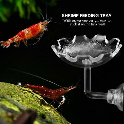 Stain Resistant Aquarium Acrylic Shrimp Feeding Bowl Water Food Dish Tube Useful