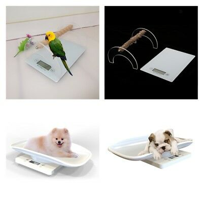 Pet Scale to Measure Cat / Dog / Bird Parrot Weight Accuracy, Capacity 1G- 10Kg