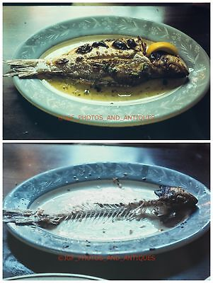 Fish On Plate Before And After Eaten Unusual Amateur Orig 1970S 35Mm Photo Slide