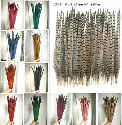 Wholesale ! natural pheasant tail feathers 10-24 inches / 25-60 cm 10-100pcs