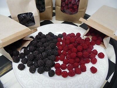 1/2 lb WILD BLACKBERRIES WAX FAKE FOOD  SCENTED TARTS CANDLE SUPPLIES BLACKBERRY