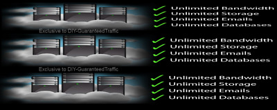 10 yrs pro prepaid Unlimited website domains cPanel ssd Web Hosting Softaculous