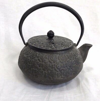 Vintage Japanese Teapot Rustic Antique Cast Iron Floral Pattern Flower infuser