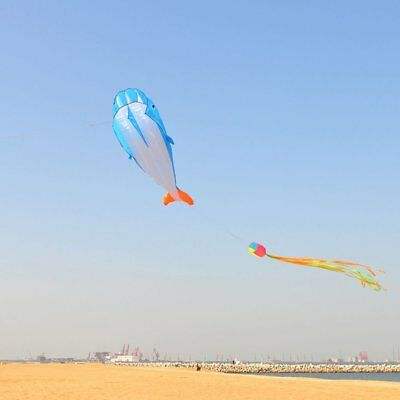 3D Dolphin Kite with Handle Line Stunt Parachute Soft Parafoil Surfing Kite OK