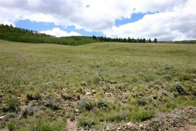 4.8 Acre Beautiful Rocky Mountain Parcel - Park County, CO near Fairplay/Hartsel