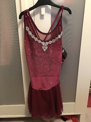 Jerrys Purple Ice Skating Dress Size Small Adult