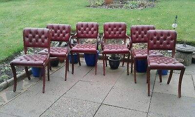 Chesterfield  Dining Chairs  English Made 6 Oxblood  Leather / Mahogany Chairs