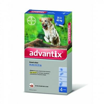 Bayer Advantix Grand Chien 25 à 40 kg 4 Pipettes