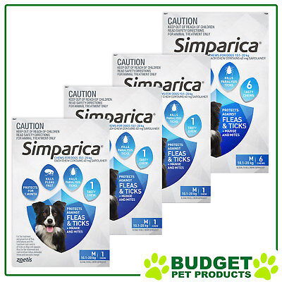 Simparica For Dogs 10.1-20kg Blue Medium 9 Chews