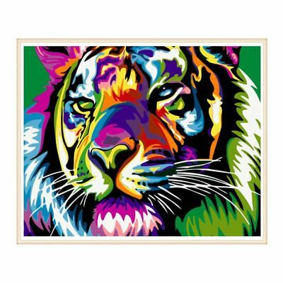 Frameless Colorful Tiger DIY Digital Oil Painting Paint By Numbers Home Decor