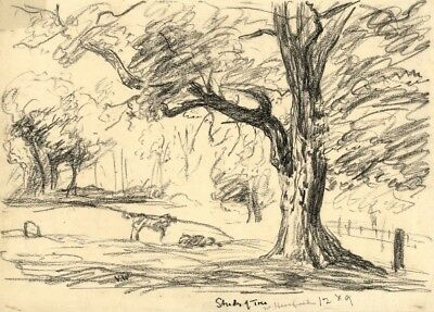 Vernon Wethered, Study of Tree, Hereford - Early 20th-century pastel drawing