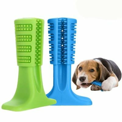 Pets Brushing Stick Molar Bristly Toothbrush Dog Puppy Most Effective Oralcare