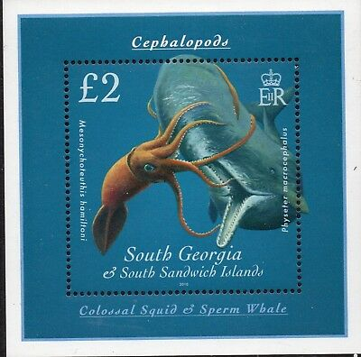 South Georgia 2010 Cephalopods sheet UM (MNH)