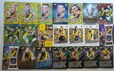 2018 AFL Trading Cards Richmond Tigers [77] Includes hall of fame