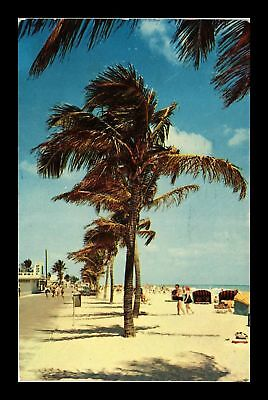 Dr Jim Stamps Us Palm Trees People Hollywood Beach Florida Postcard