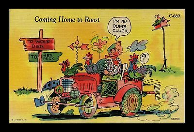 Dr Jim Stamps Us Comic Coming Home To Roost Chicken Linen Topical Postcard