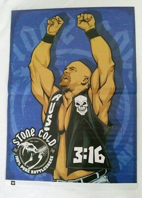 WWE/WWF Stone Cold Steve Austin/ Big Show Fold Out Poster (RARE)