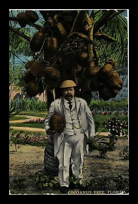 Dr Jim Stamps Us Man Under Coconut Tree Florida Topical Postcard