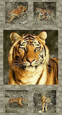 Tiger Kingdom Quilt Panel * On The Prowl  * New * Free Post *