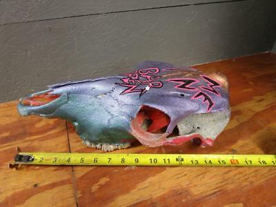 Hand Painted Cow Skull Southwest Wall BAR OPEN COME IN HOME WESTERN TAXIDERMY