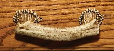"Deer Antler Handle Drawer Pull  4"" W/ Screws Resin Cabin Lodge Decor"