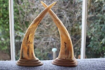 Antique Chinese Asian Pair large Carved Dragon Cattle Horns on Wood 32 cm h